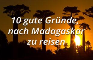 10 gute Gründe, nach Madagaskar zu reisen