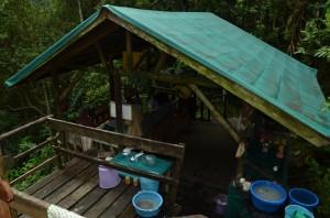 Camp Marojejya