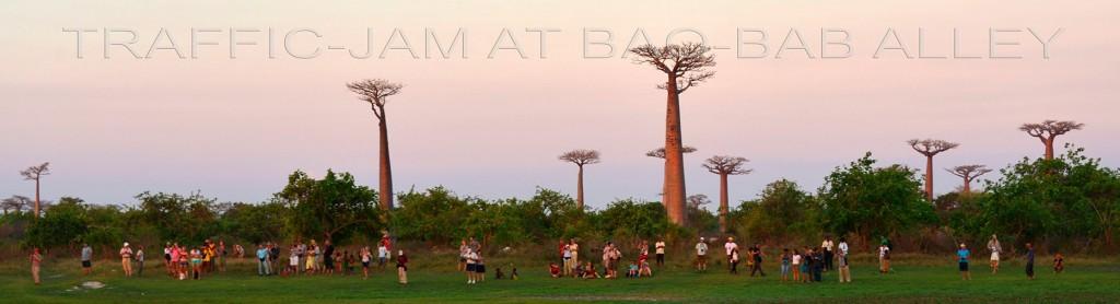 Stau auf der Baobab-Allee