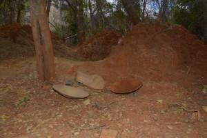 Aufgewühlter Boden im Wald der Lemuren