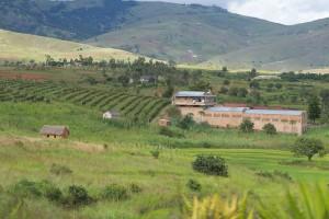 Weinanbau im südlichen Hochland