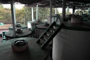 Weinfässer aus Beton