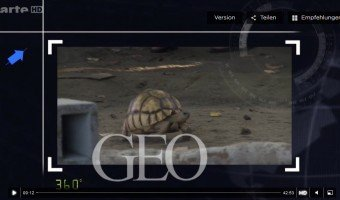 Mediathek Die goldenen Schildkröten von Madagaskar