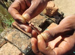 Faden einer Seidenspinne