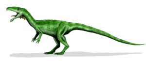 Masiakasaurus knoepfleri