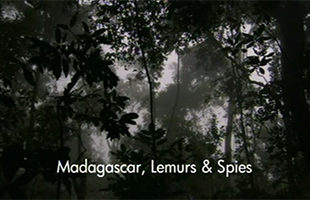 Madagascar, lemurs and spies Mediathek