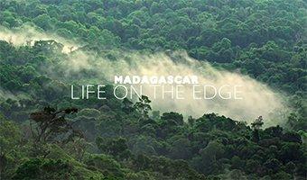 Mediathek - Madagascar - Life on the edge