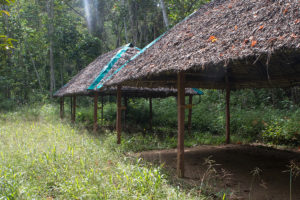Maromizaha Campground (1)