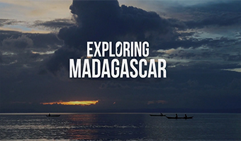 Mediathek - Madagascar - Life on the edge